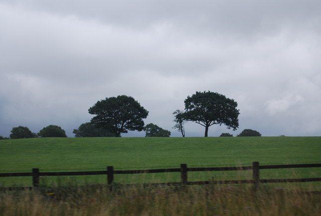 Farmland and trees by the M6