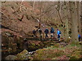 SK2579 : Footbridge over Burbage Brook by JThomas