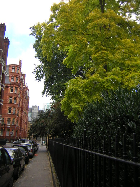 Ridgmount Gardens, WC1