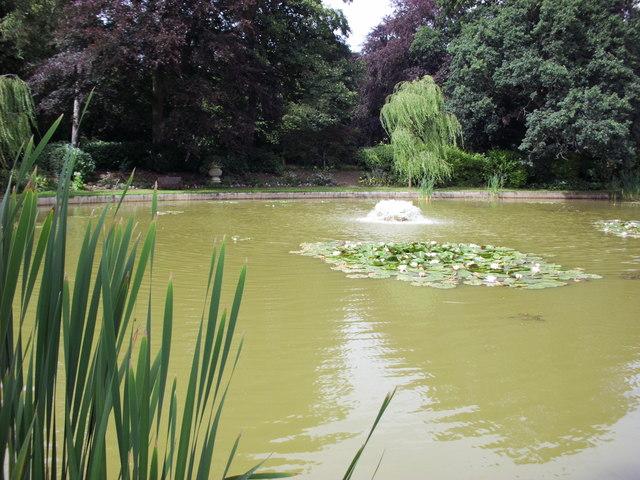 Ascott pond