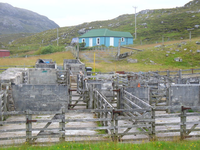 Sheep Pens at Carishader