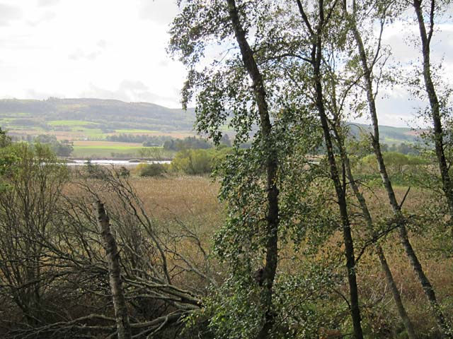 View from Paddockmuir Wood