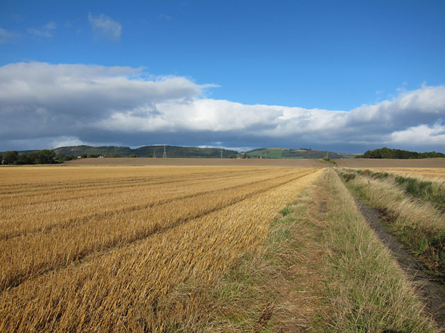 Stubble field near Gallowflat farm