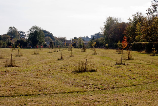 Alleyfield Burial Ground