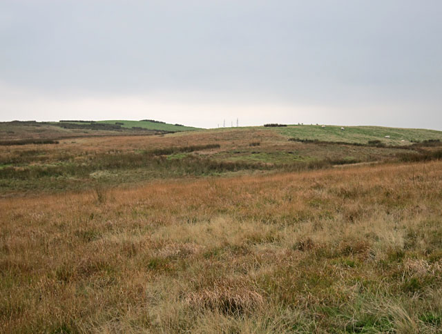 Boggy ground south of Black Loch