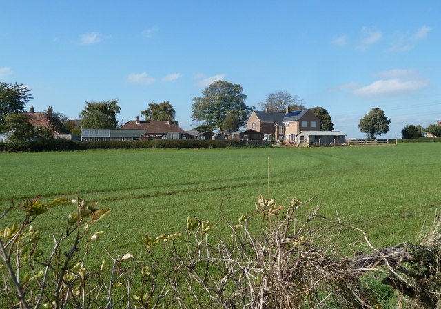 Fields and houses at Rowthorne