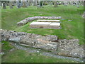NT9065 : Priors' graves at Coldingham Priory by kim traynor