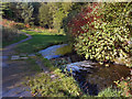 SD9504 : River Medlock Weir, Leesbrook by David Dixon
