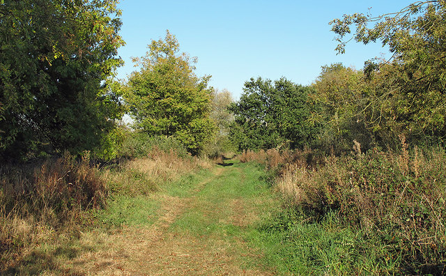Bridleway along the Green