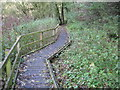 SK2857 : Footpath in Slinter Wood by Chris Wimbush