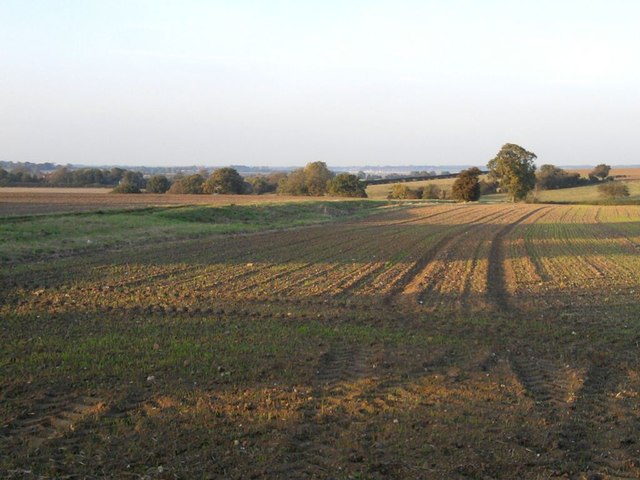 Farmland In Autumn