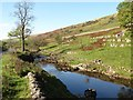 SD9079 : The River Wharfe, Langstrothdale by Christine Johnstone