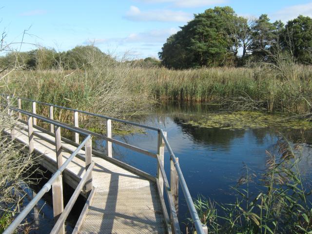 Walkway to Island Hide, Westhay Moor Nature Reserve