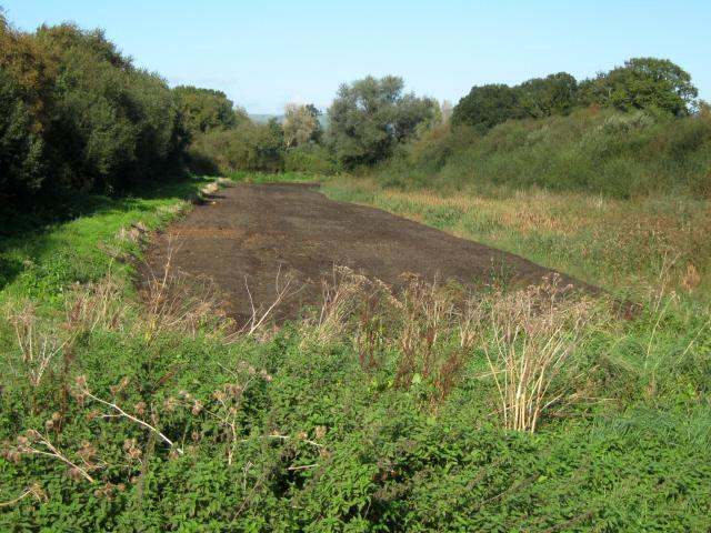 Peat Workings, Westhay Moor