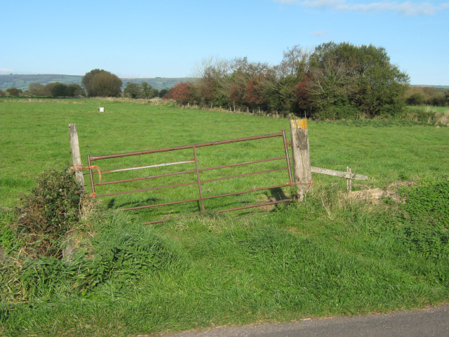 Field gate on Westhay Moor Drove