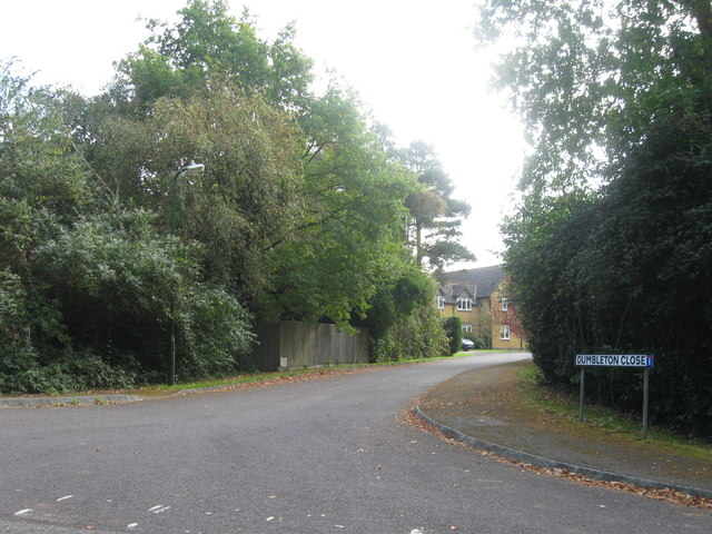 Dumbleton Close, Thornhill