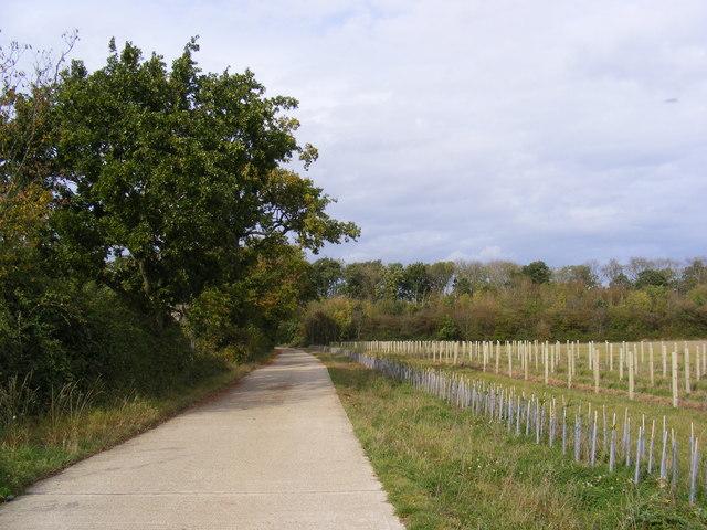 Watt's Roadway, Heveningham