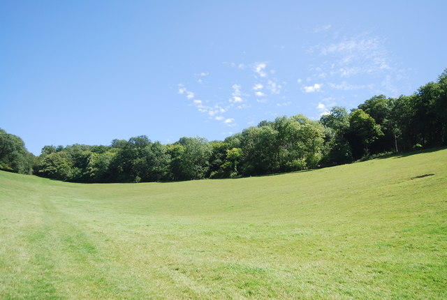 The North Downs