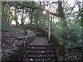 SD7113 : Footpath at Eagley by Philip Platt