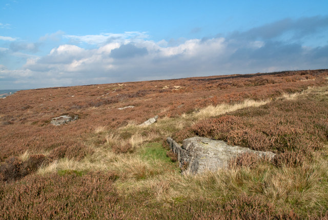 Low Moor - heather with scattered rocks
