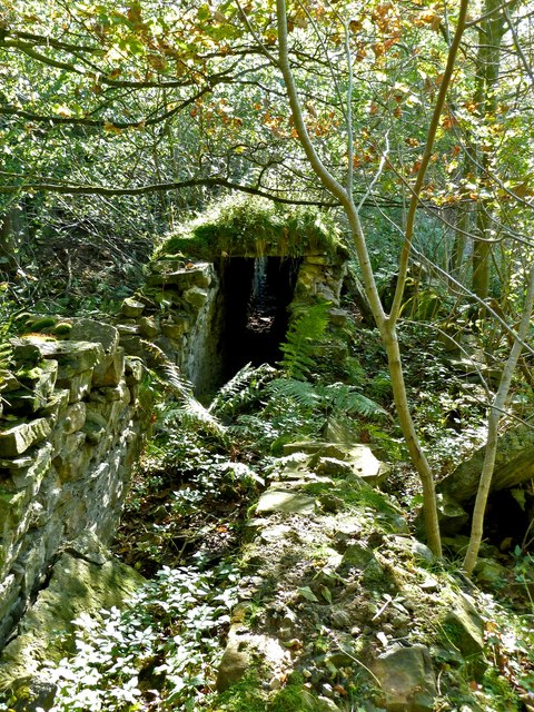 Remains of Flue, Gillfield Wood