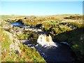 NS6886 : Endrick Water [3] by Robert Murray