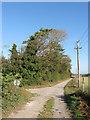 TQ4507 : Littledene Lane by Simon Carey