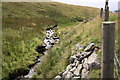 SD7281 : Stream beside roadside fence at Birk Shaw by Roger Templeman