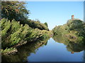 SK7592 : Chesterfield Canal passing disused brickworks by Christine Johnstone