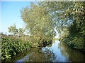SK7392 : Chesterfield Canal, north of Shaw's Bridge by Christine Johnstone