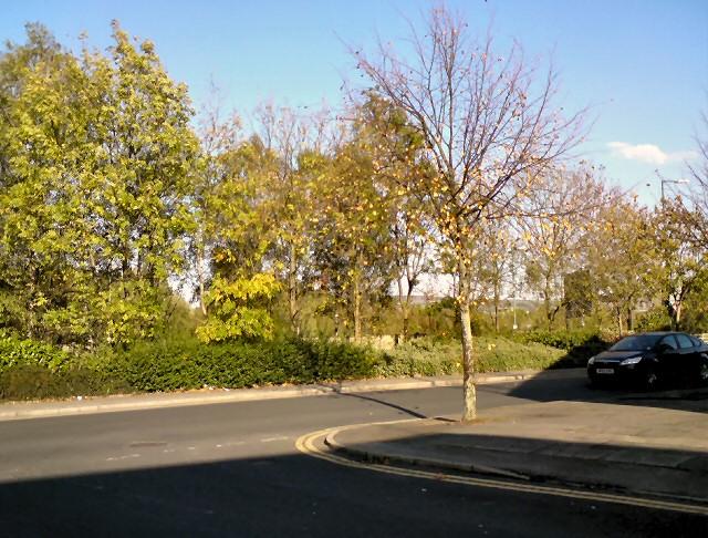 New Beech Street