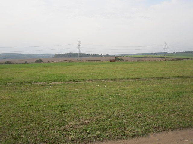 View from Car Boot field in direction of Peafield Plantation