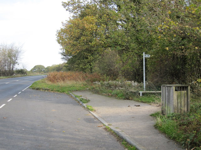 Lay-by and footpath adjoining Peafield Plantation