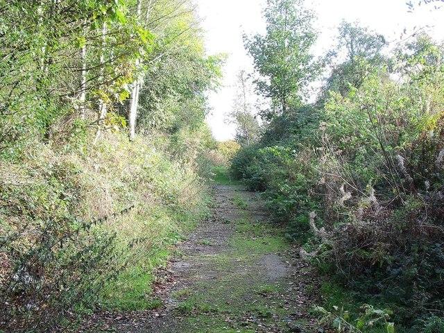 Footpath to Fynneylane
