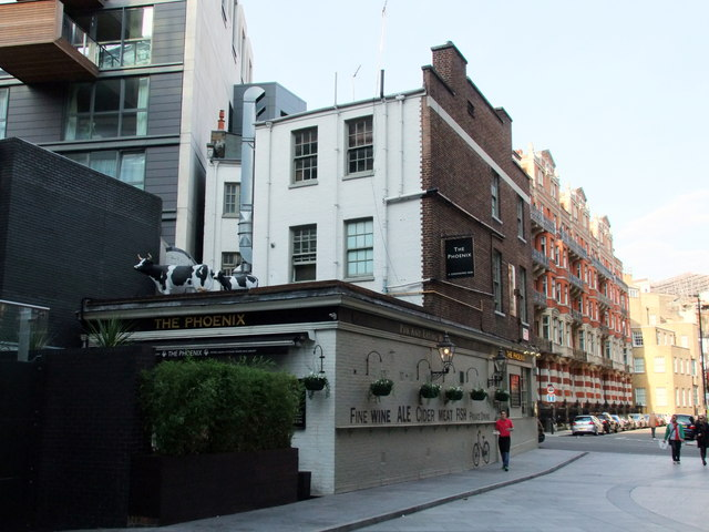 Two cows on The Phoenex Public House, Victoria, London