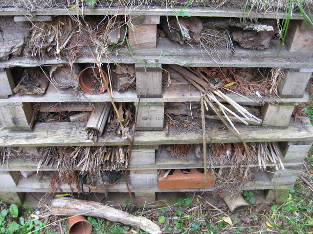 Bug hotel, Chester Zoo
