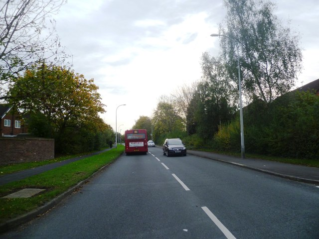 Enfield Park Road - Cinnamon Brow