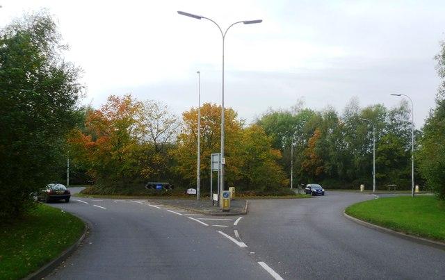 Roundabout - Birchwood Park