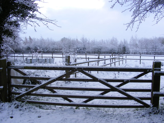 Paddock beside the A143