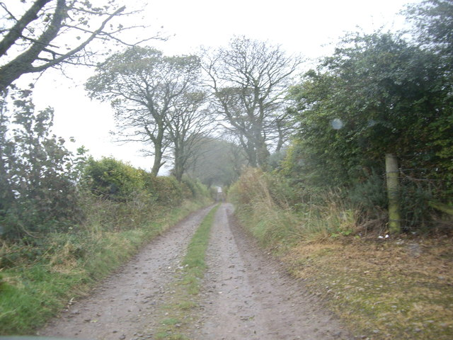 Lane to North Lodge, Fetteresso