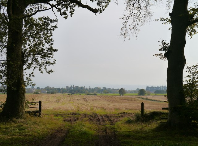 A View From Moorshot Plantation