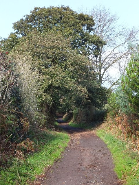The Sandstone Trail near Rock Farm