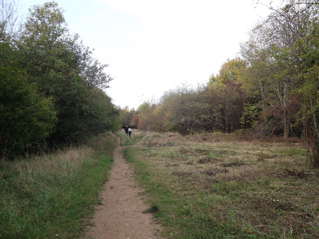 Footpath beside Featherbed Lane