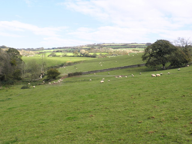 Grazing land, near Rye Park