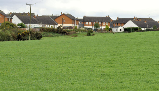 Houses and fields, Newtownards