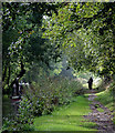 SK1313 : Canal towpath near Fradley Junction, Staffordshire by Roger  Kidd