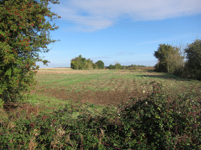 Stubble field off Caxton Drift
