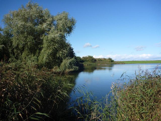 Rural East Lothian : Seafield Pond, Belhaven, Dunbar