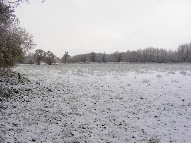 Winter meadow near the A143