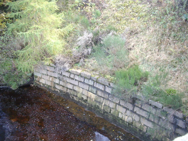 Re-inforced river bank